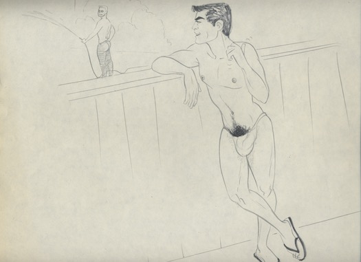 Image for 21 HOMO-EROTIC DRAWINGS